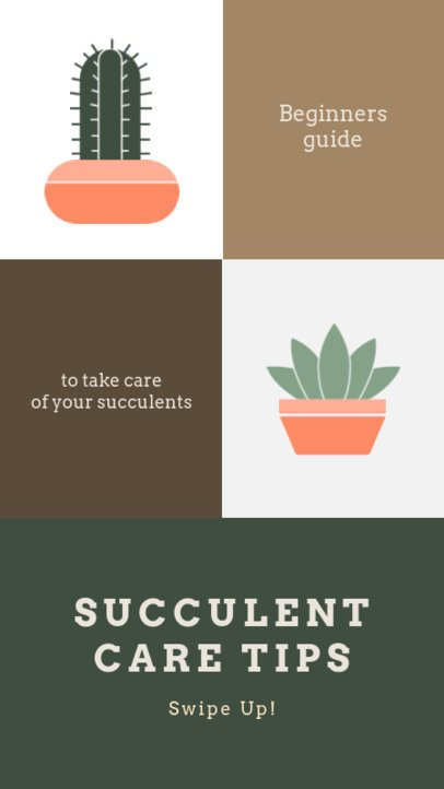 Instagram Story Template Featuring a Cactus Care Guide for Beginners 1469b-el1