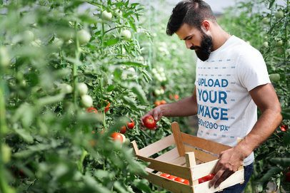 Mockup of a Man Wearing a T-Shirt to Harvest Tomatoes 40380-r-el2